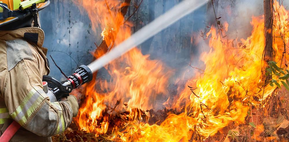 Juntos podemos erradicar los incendios forestales